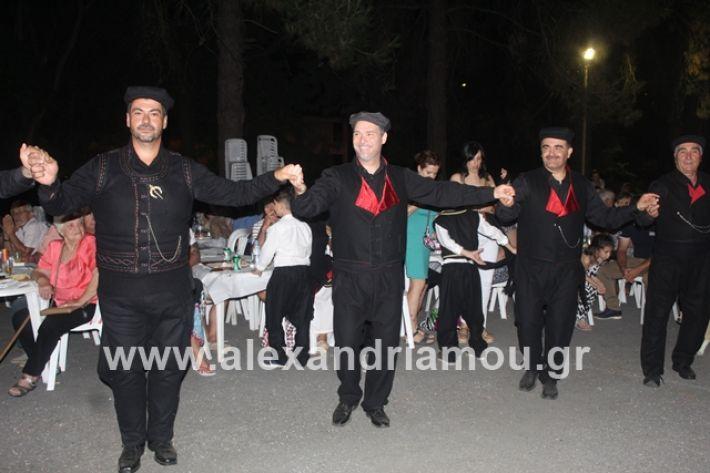 alexandriamou.gr_brusakipanigiri2019083
