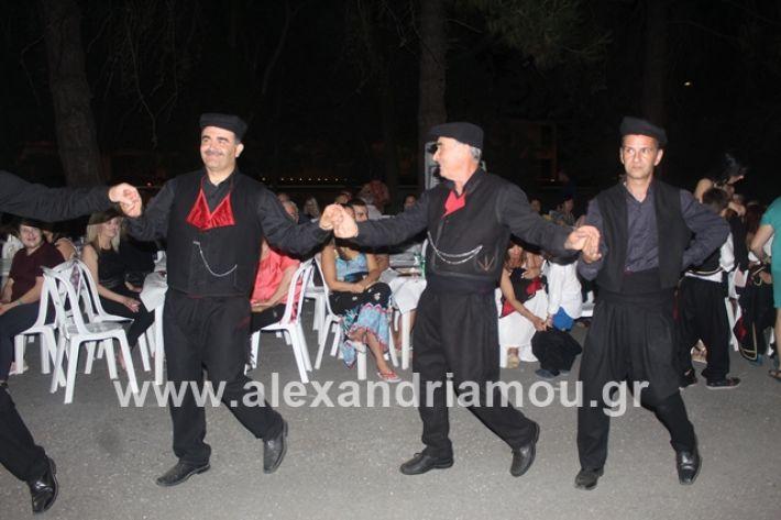 alexandriamou.gr_brusakipanigiri2019084