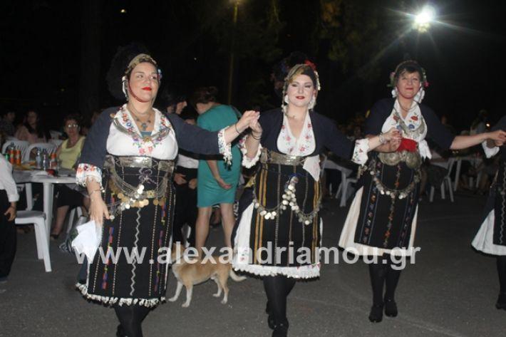 alexandriamou.gr_brusakipanigiri2019085