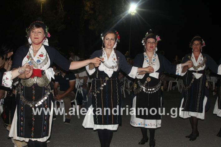 alexandriamou.gr_brusakipanigiri2019086