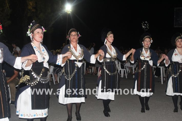 alexandriamou.gr_brusakipanigiri2019087
