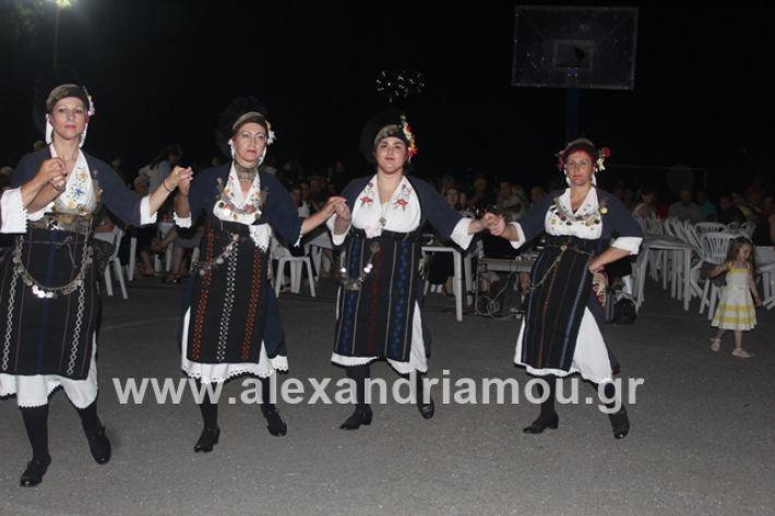 alexandriamou.gr_brusakipanigiri2019088
