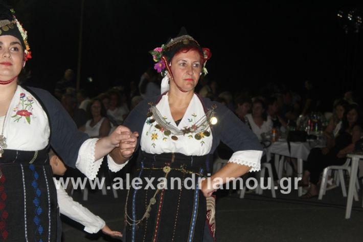 alexandriamou.gr_brusakipanigiri2019089