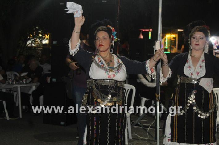 alexandriamou.gr_brusakipanigiri2019099