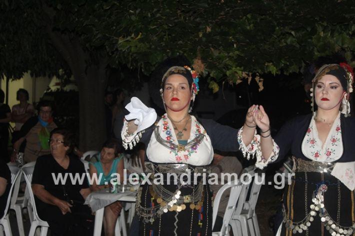 alexandriamou.gr_brusakipanigiri2019102