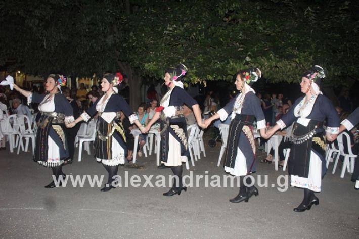alexandriamou.gr_brusakipanigiri2019103