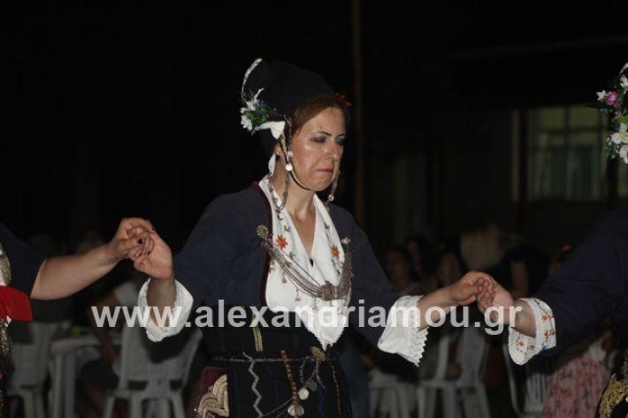 alexandriamou.gr_brusakipanigiri2019108