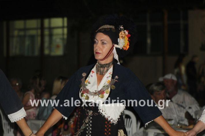 alexandriamou.gr_brusakipanigiri2019113