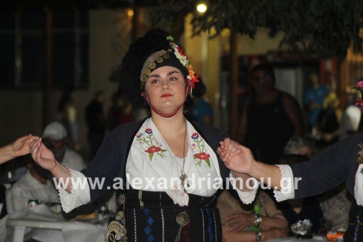 alexandriamou.gr_brusakipanigiri2019114