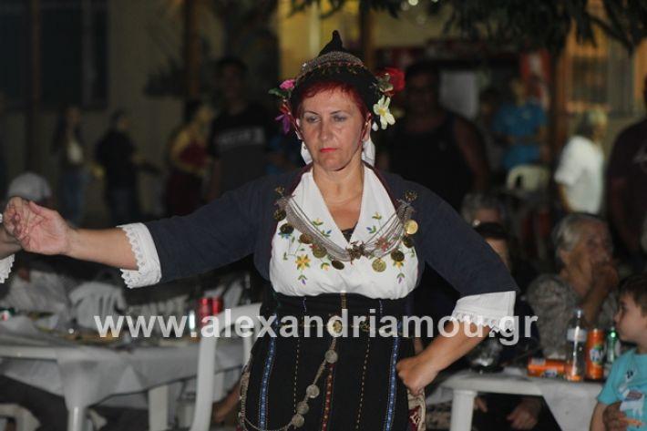 alexandriamou.gr_brusakipanigiri2019115