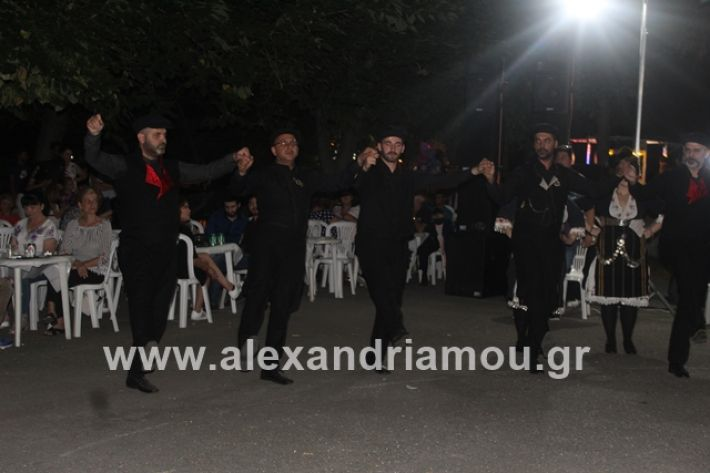 alexandriamou.gr_brusakipanigiri2019124