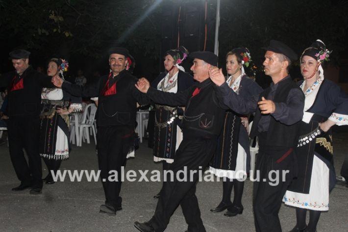 alexandriamou.gr_brusakipanigiri2019127