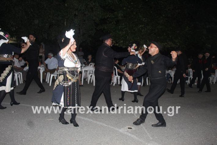 alexandriamou.gr_brusakipanigiri2019138