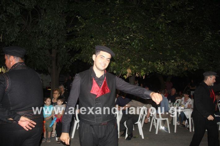 alexandriamou.gr_brusakipanigiri2019140