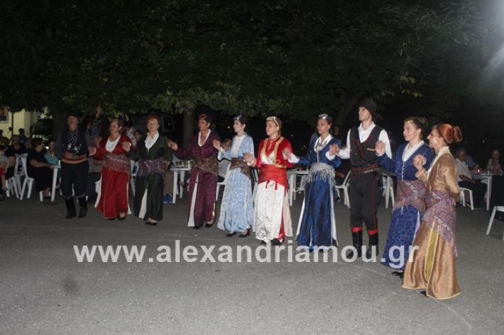 alexandriamou.gr_brusakipanigiri2019152