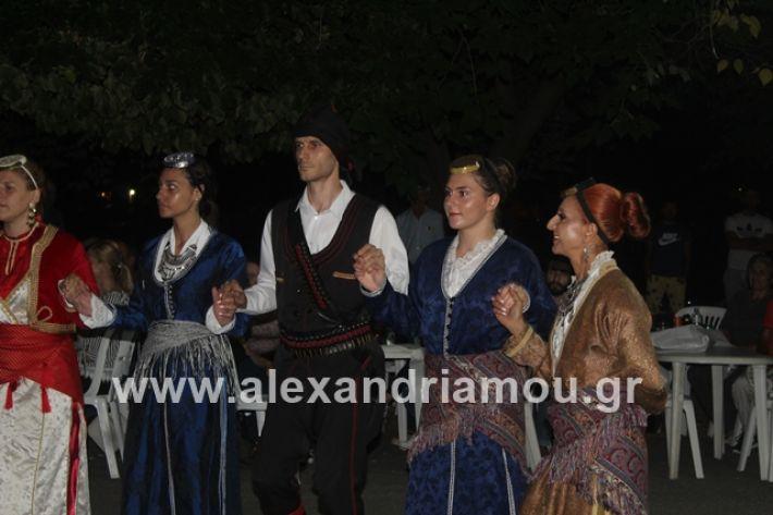 alexandriamou.gr_brusakipanigiri2019153