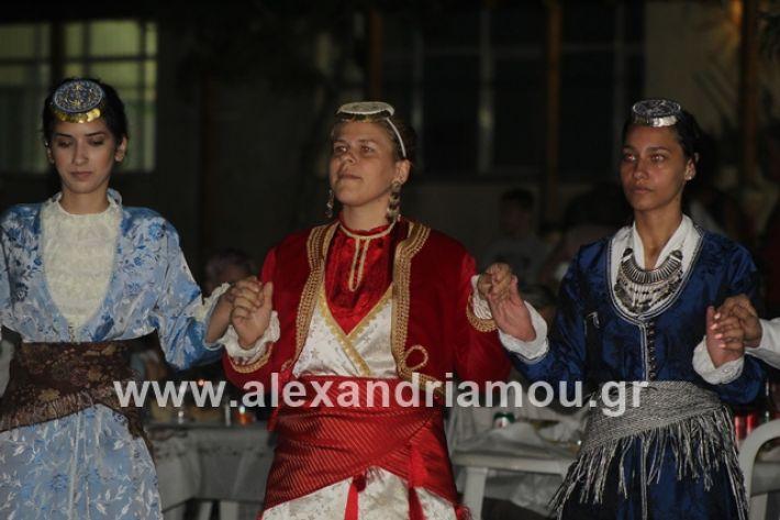 alexandriamou.gr_brusakipanigiri2019159