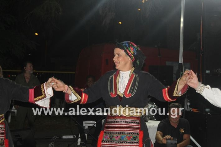 alexandriamou.gr_brusakipanigiri2019190