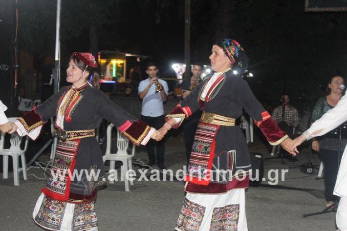 alexandriamou.gr_brusakipanigiri2019191