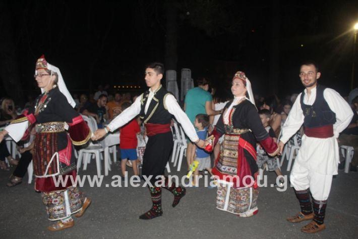 alexandriamou.gr_brusakipanigiri2019193