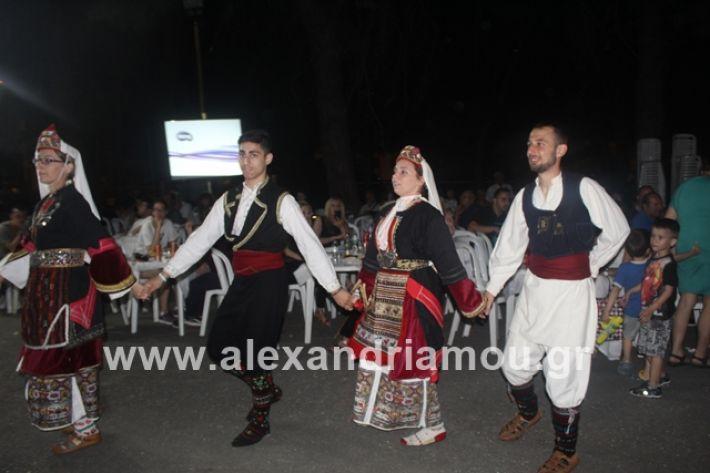 alexandriamou.gr_brusakipanigiri2019194