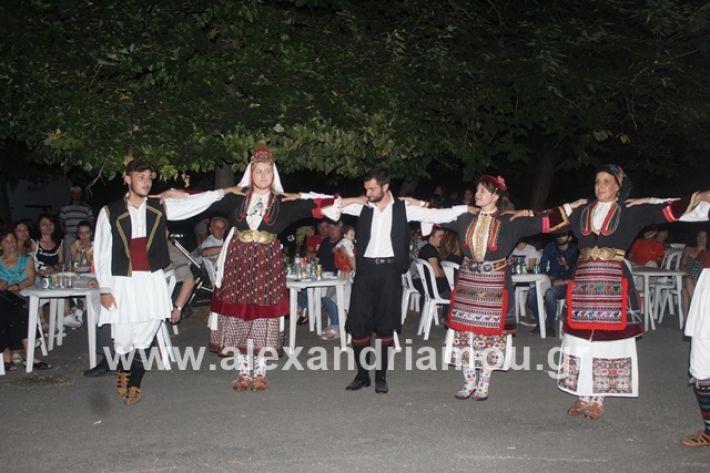 alexandriamou.gr_brusakipanigiri2019198