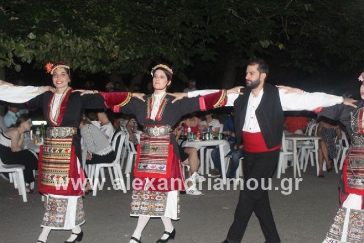alexandriamou.gr_brusakipanigiri2019200