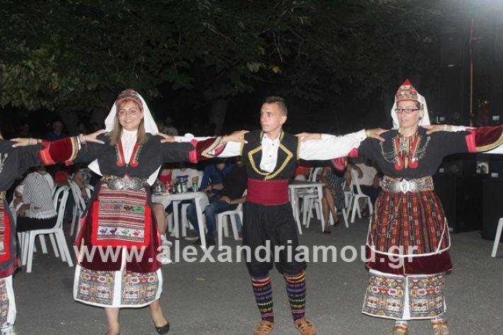 alexandriamou.gr_brusakipanigiri2019202