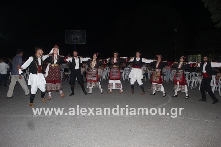 alexandriamou.gr_brusakipanigiri2019203