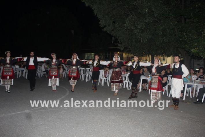 alexandriamou.gr_brusakipanigiri2019204