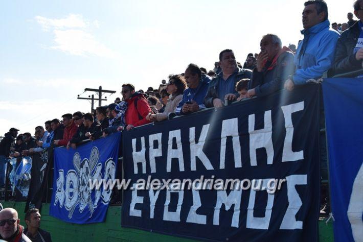 alexandriamou.gr_aehraklis115