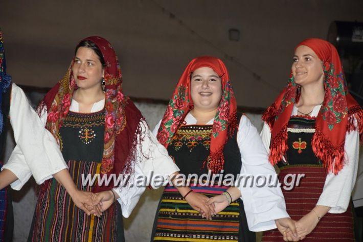 alexandriamou.gr_xoreutikakm18019
