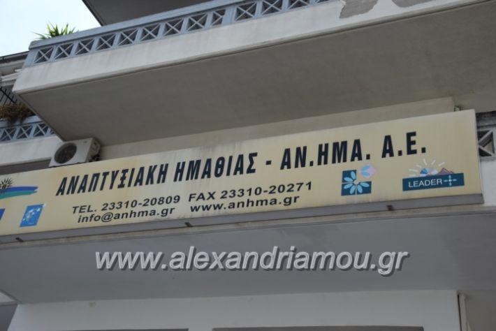 alexandriamou_kdiaviouveria15004
