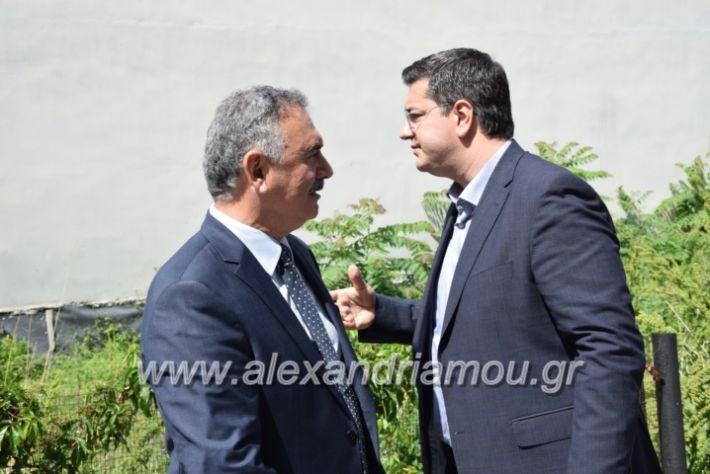 alexandriamou_kdiaviouveria15013