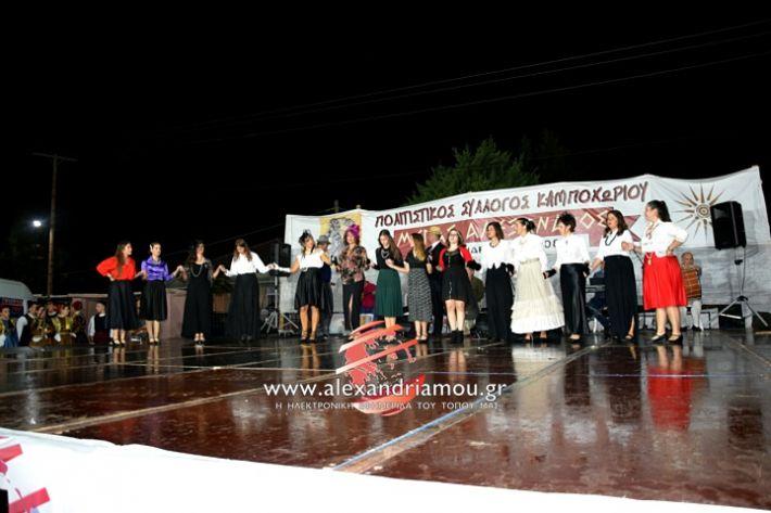 alexandriamou.gr_kampoxori2019DSC_0282