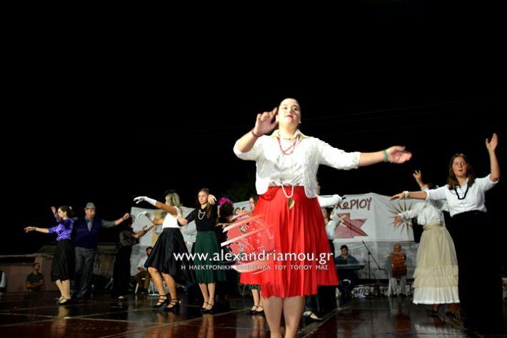 alexandriamou.gr_kampoxori2019DSC_0299