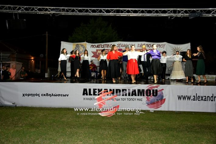 alexandriamou.gr_kampoxori2019DSC_0336