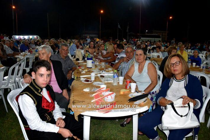 alexandriamou.gr_kampoxori2019DSC_0341