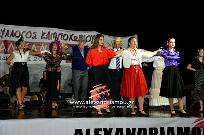 alexandriamou.gr_kampoxori2019DSC_0343