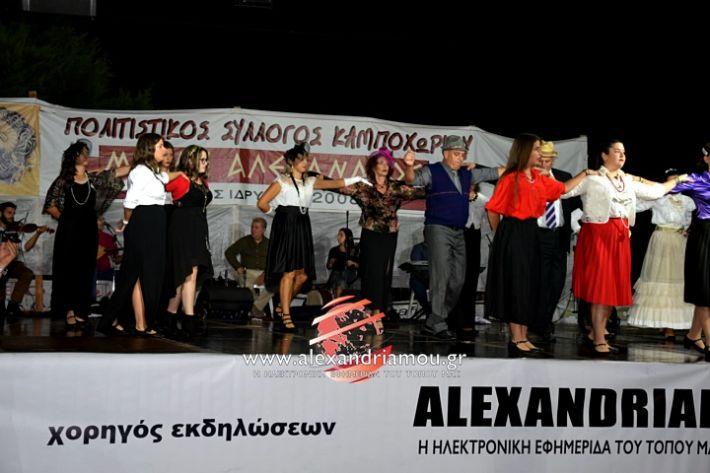 alexandriamou.gr_kampoxori2019DSC_0344