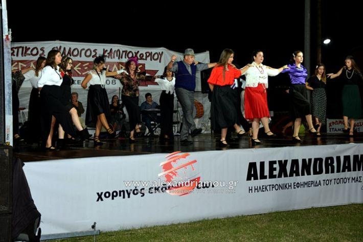 alexandriamou.gr_kampoxori2019DSC_0346