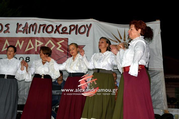 alexandriamou.gr_kampoxori2019DSC_0414