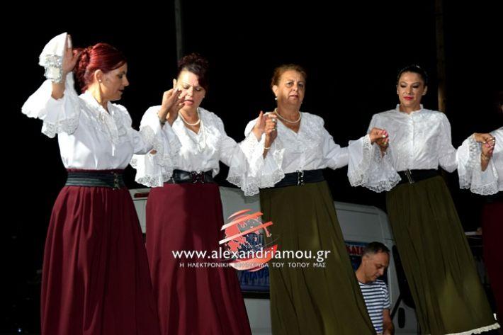 alexandriamou.gr_kampoxori2019DSC_0423