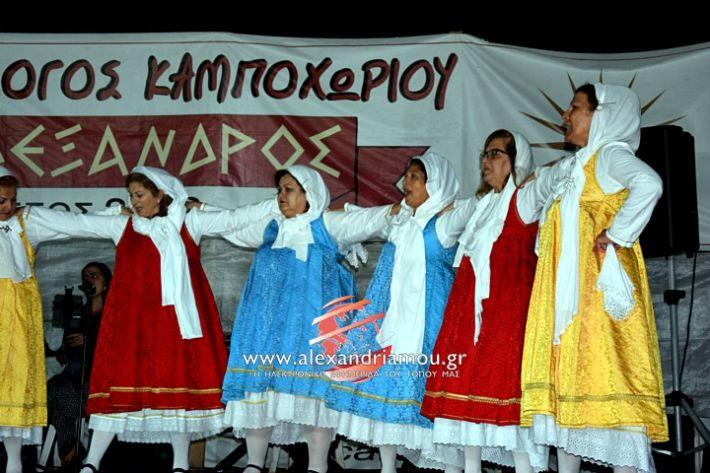 alexandriamou.gr_kampoxori2019DSC_0449