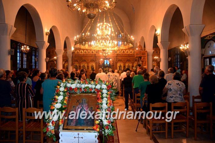 alexandriamou.gr_kampoxori19DSC_0280