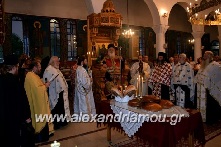 alexandriamou.gr_kampoxori19DSC_0281