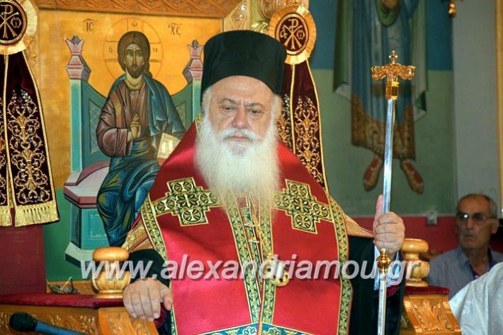 alexandriamou.gr_kampoxori19DSC_0282