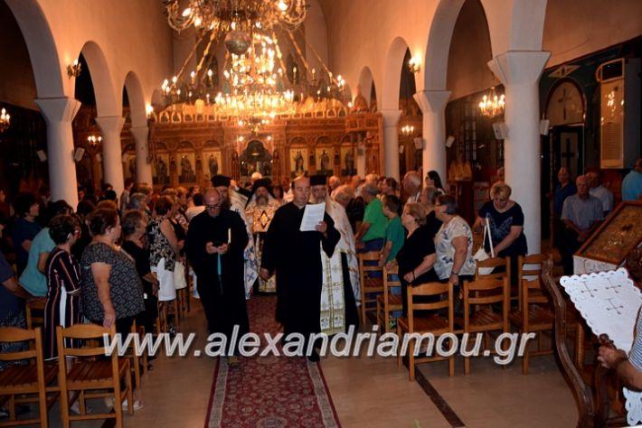 alexandriamou.gr_kampoxori19DSC_0318