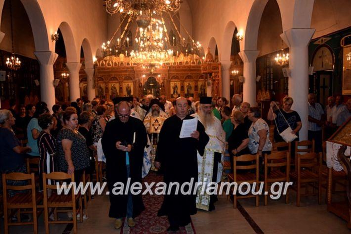alexandriamou.gr_kampoxori19DSC_0319