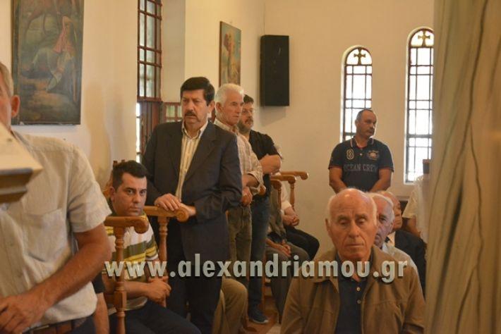 alexandriamou_pauleia_kapetan_kapsalhs1017